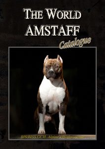 wamstaffbook[1]